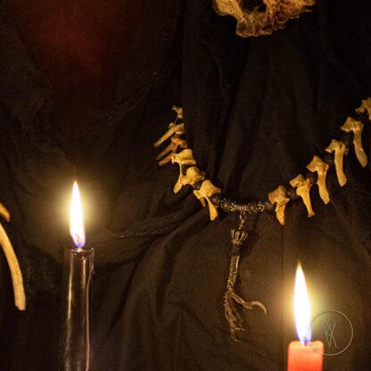 ⋮ Shadowhunter ⋮ Bone Necklace